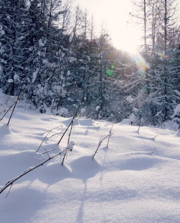 alpes-neige