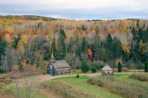 foret-mauricie