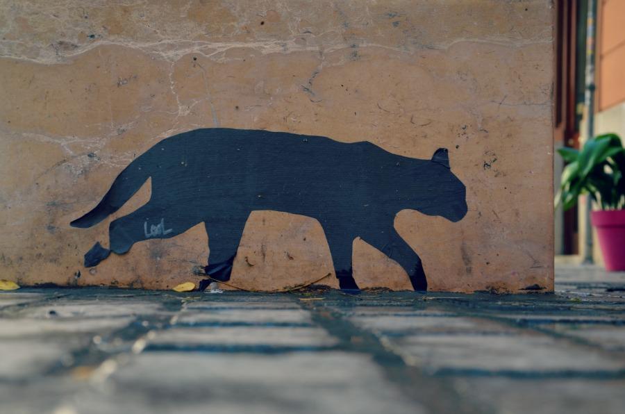 chat-streetart-valencia
